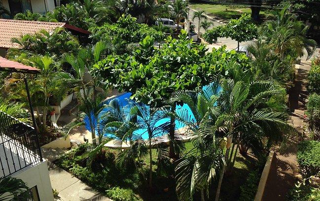 Tropical Dreams 6